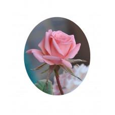РТ130064м Троянда міні. Папертоль. Набір картини з паперу