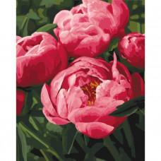 КНО3049 Улюблені квіти. Ідейка. Набір для малювання картини за номерами